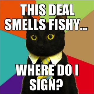 business cat meme deal smells fishy lol