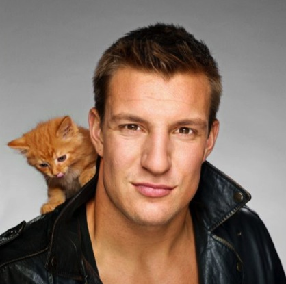 cute orange kitten gronk leather jacket