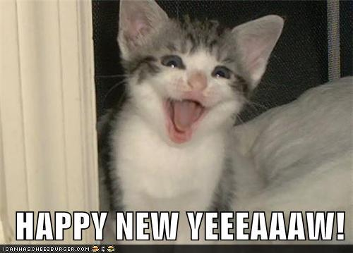 happy-new-yeeeaaaw cute kitten cats