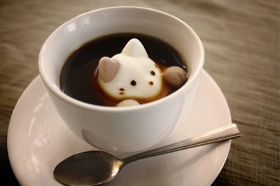 kitten marshmallow in tea cup
