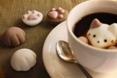 kitten paws marshmallows cute