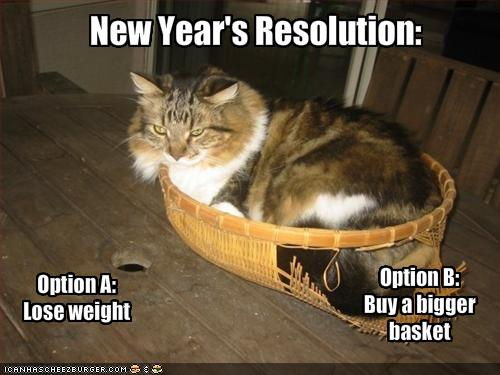 new year resolution lose weight buy bigger basket funny cat lolcats