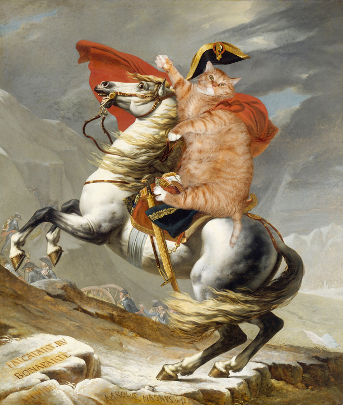cat painting bonaparte
