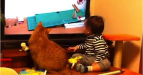 cute cat and baby watching tv