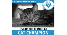 March Meowdness Champ Oskar The Blind Cat