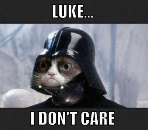 Celebrate Caturday With Star Wars Cats Cats Vs Cancer