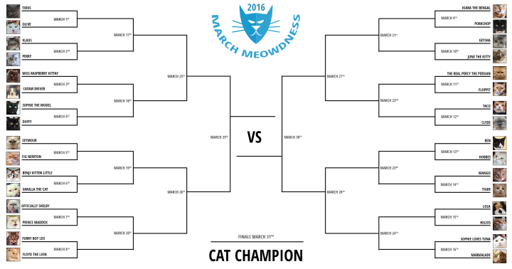 Cat-Madness-Tourney-2016-final