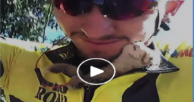 cyclist rescues kitten