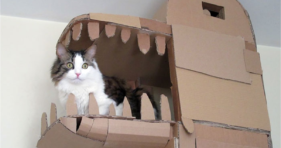 Look At This Epic Cardboard Dragon Cat House cats vs cancer