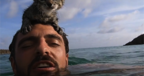 Cat Dad and Kitty Go For A Swim cats vs cancer