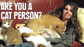 Are Cat People Crazy Awesome?